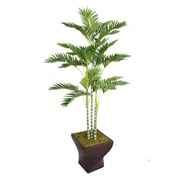"Laura Ashley 78"" Palm Tree in 17"" Fiberstone Planter"