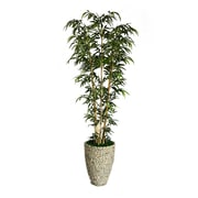 "Laura Ashley 86"" Natural Bamboo Tree in 16"" Fiberstone Planter"