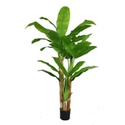 "Laura Ashley 72"" Banana Tree With Real Touch Leaves"