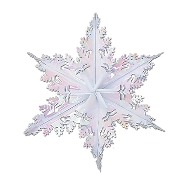 Opalescent Metallic Winter Snowflake, 24