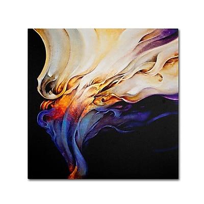 Trademark Fine Art 'Evoke' 24