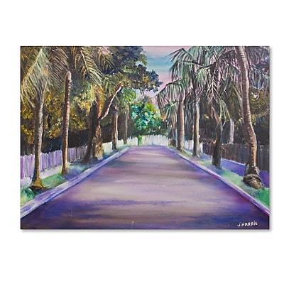 Trademark Fine Art 'Key West Street' 14
