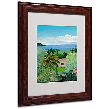 Trademark Fine Art Costa Rican Beach' 11
