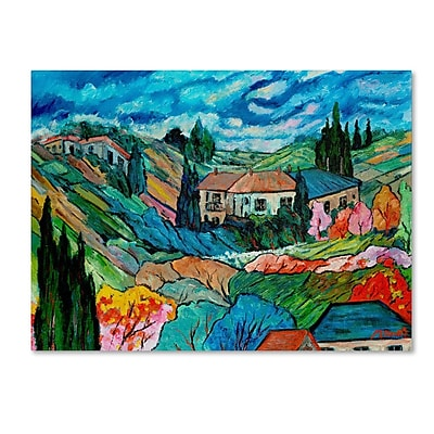 Trademark Fine Art 'Valley House' 18