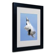 "Trademark Fine Art 'Soaring' 11"" x 14"" Wood Frame Art"