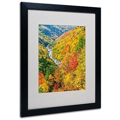 Trademark Fine Art 'Valley' 16