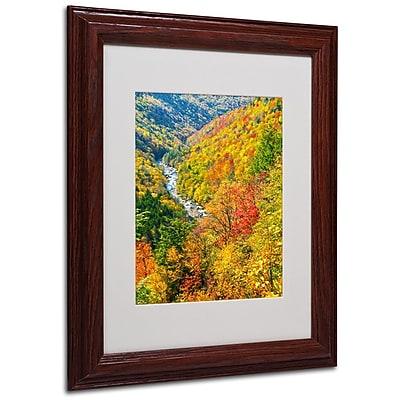 Trademark Fine Art 'Valley' 11