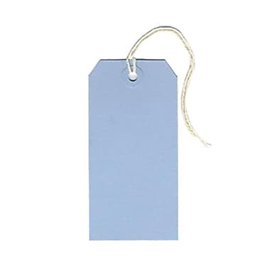 JAM Paper® Gift Tags with String, Medium, 2 3/8 x 4 3/4, Baby Blue, 100/pack (39197114B)