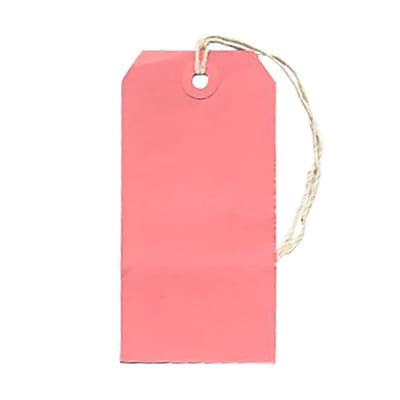 JAM Paper® Gift Tags with String, Medium, 2 3/8 x 4 3/4, Pink, 100/pack (39197118B)