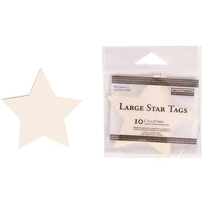 JAM Paper® Creative Gift Tags, Large, 3 x 2 3/4, Ivory Star, 10/pack (305124659)