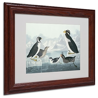 Trademark Fine Art 'Black-Throated Guillemot' 11