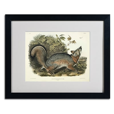 Trademark Fine Art 'Canis Virginianus' 16