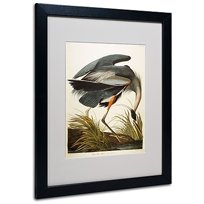 Trademark Fine Art 'Great Blue Heron' 16