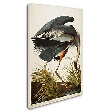 Trademark Fine Art 'Great Blue Heron' 22