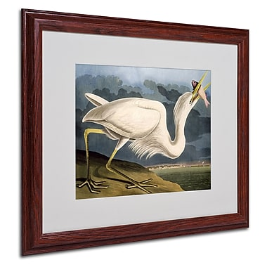 Trademark Fine Art 'Great White Heron' 16