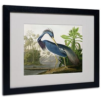 Trademark Fine Art 'Louisiana Heron' 16