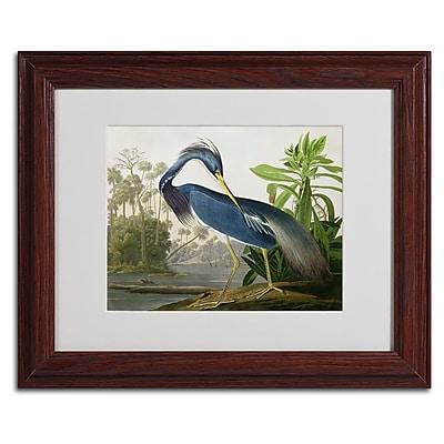 Trademark Fine Art 'Louisiana Heron' 11