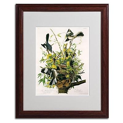 Trademark Fine Art 'Mocking Birds and Snake II' 16
