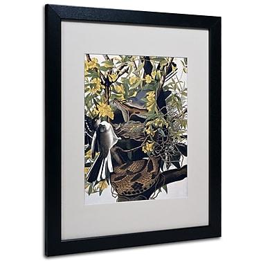 Trademark Fine Art 'Mocking Birds and Snake' 16