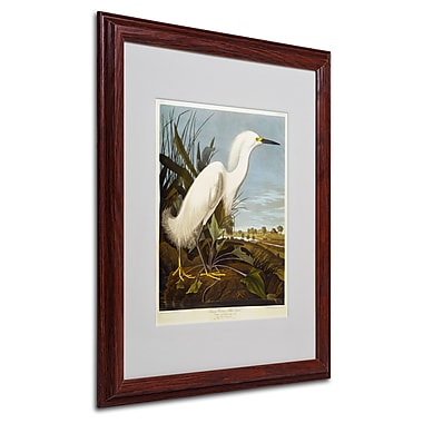 Trademark Fine Art 'Snowy Heron' 16
