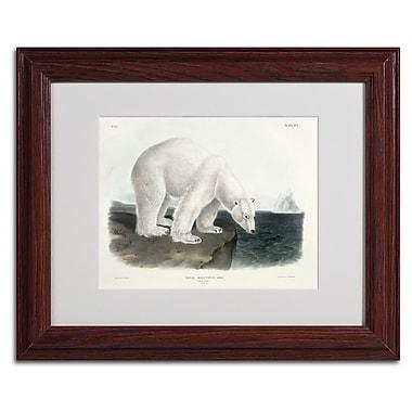 Trademark Fine Art 'Ursus Maritimus Polar Bear' 11