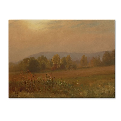 Trademark Fine Art 'Autumn LandScape New England' 24