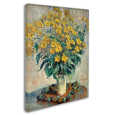 Trademark Fine Art 'Jerusalem Artichoke Flowers' 14