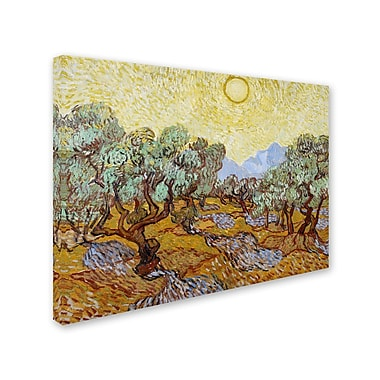 Trademark Fine Art 'Olive Trees 1889' 24