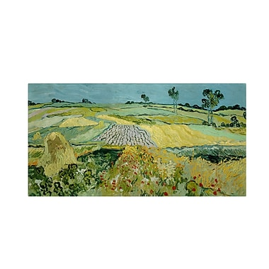 Trademark Fine Art 'Wheatfields Near Auvers' 10