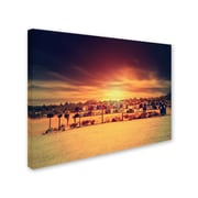 "Trademark Fine Art 'Horizontal ACtivity' 30"" x 47"" Canvas Art"