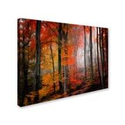 """Trademark Fine Art 'Wildly Red' 16"""" x 24"""" Canvas Art"""