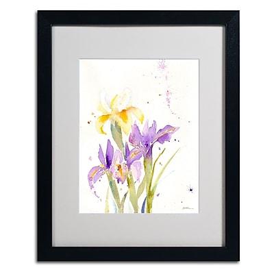 Trademark Fine Art 'The Golden Iris' 16