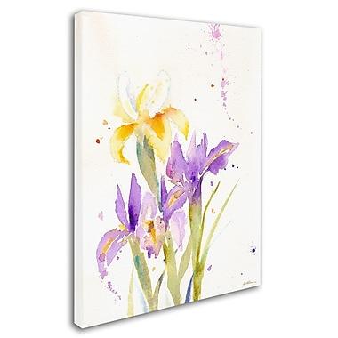 Trademark Fine Art 'The Golden Iris' 24