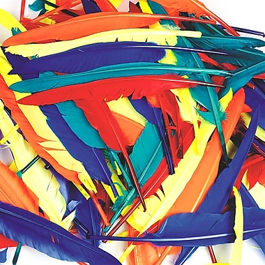 S&S BE2865 Assorted Quill Feathers, 12