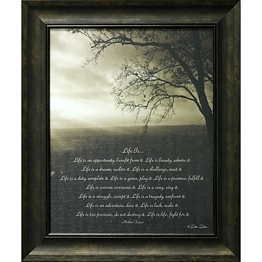 Life Is II, Framed, 16