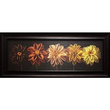 Floral Salute, Framed, 12