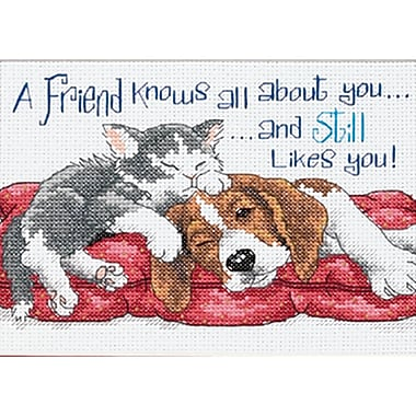 Jiffy A Friend Knows Mini Counted Cross Stitch Kit, 7
