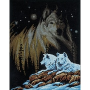 """Northern Lights Counted Cross Stitch Kit, 11""""X14"""" 14 Count"""