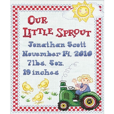 On The Farm Birth Record Counted Cross Stitch Kit, 9