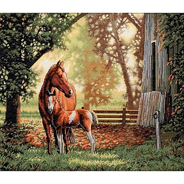 Gold Collection Mare & Foal Counted Cross Stitch Kit, 14