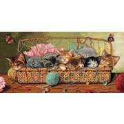 """Gold Collection Kitty Litter Counted Cross Stitch Kit, 18""""X9"""" 18 Count"""