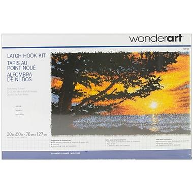 Wonderart Latch Hook Kit 30