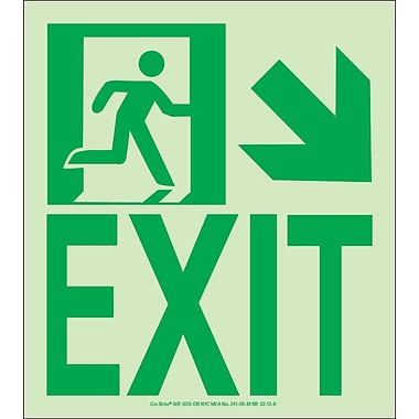 NYC Wall Mount Exit Sign, Down Right, 9
