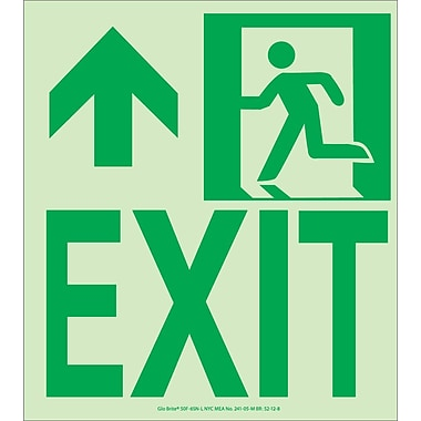 NYC Wall Mount Exit Sign, Forward/Left Side, 9X8, Flex, 7550 Glow Brite, MEA Approved