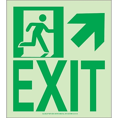 NYC Wall Mount Exit Sign, Up Right, 9