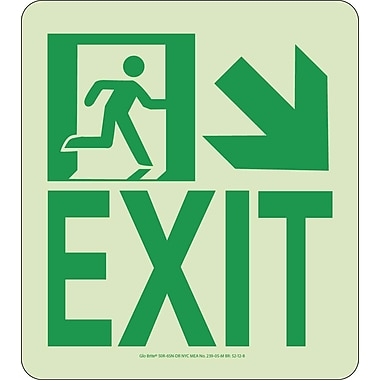 NYC Wall Mont Exit Sign, Down Right, 9