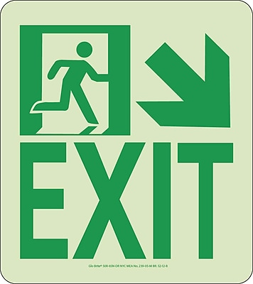 NYC Wall Mont Exit Sign, Down Right, 9X8, Rigid, 7550 Glow Brite, MEA Approved