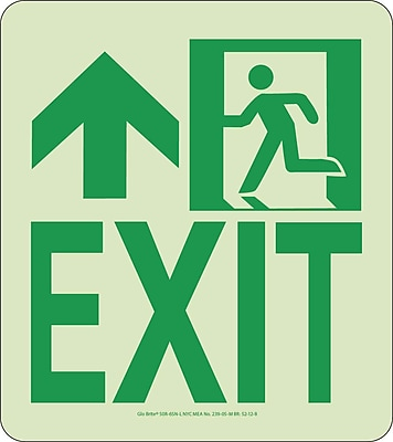 NYC Wall Mont Exit Sign, Forward/Left Side, 9X8, Rigid, 7550 Glow Brite, MEA Approved