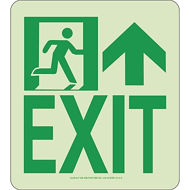 NYC Wall Mont Exit Sign, Forward/Right Side, 9X8, Rigid, 7550 Glow Brite, MEA Approved