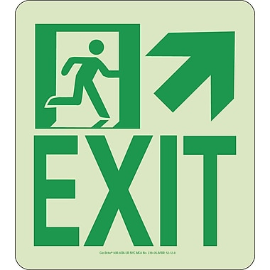 NYC Wall Mont Exit Sign, Up Right, 9